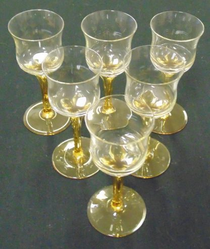 6 Amber Lequire Glasses